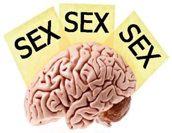 воздержание и мозговая деятельность