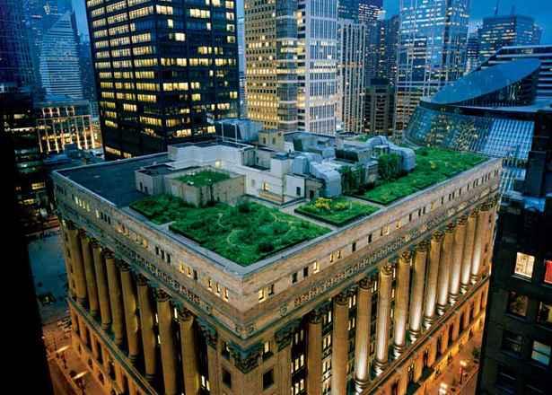 озеленение крыш домов