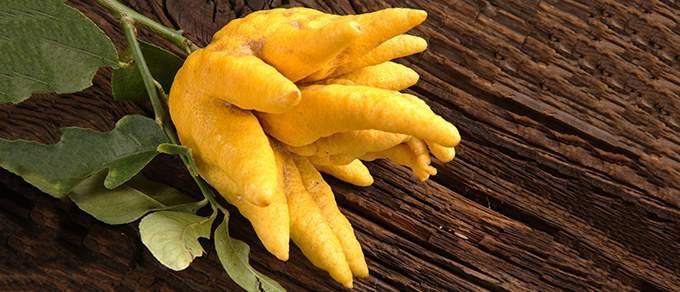 продукт рука Будды