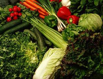 продукты которые стоит выращивать