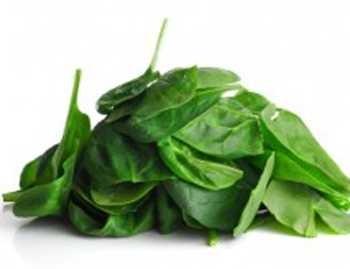 листья шпината