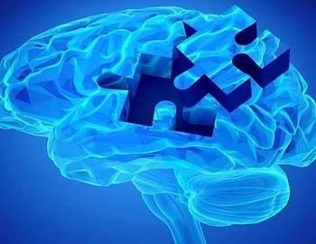 влияние пептидов на память