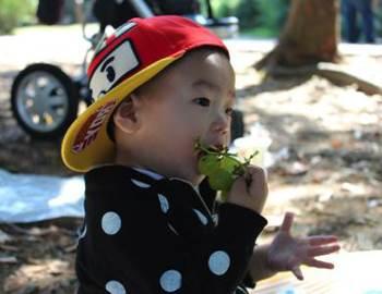 ребенок ест виноград