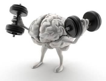 сила приносит пользу мозгу