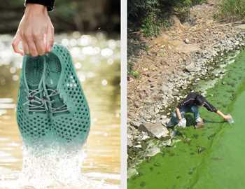 обувь из водорослей