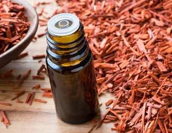 сандаловое дерево и масло из него
